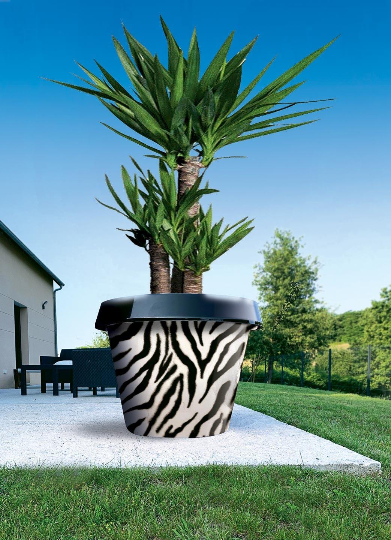 pot de fleur jumbo zebre