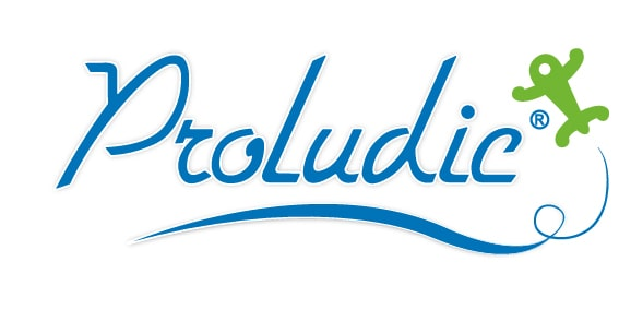 Produlic - Logo